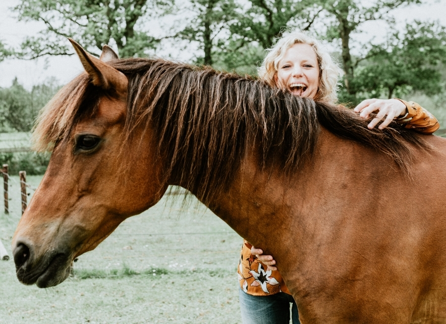 leermeesters paarden coach jezelf zijn zichzelf zijn
